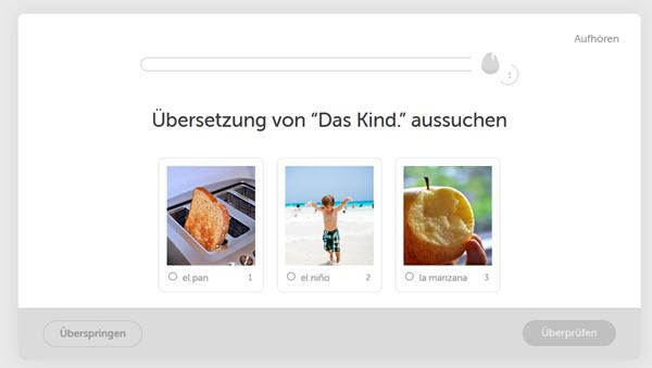 Die besten Sprachtools: Duolingo