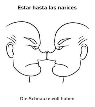 Estar-hasta-las-narices-Spanische-Redewendungen-Sprichwörter