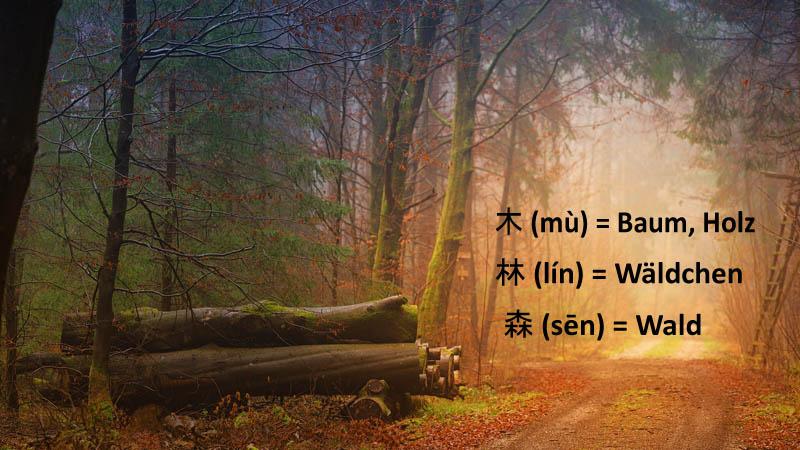 Chinesische-Schriftzeichen-Wörter-Vokabeln